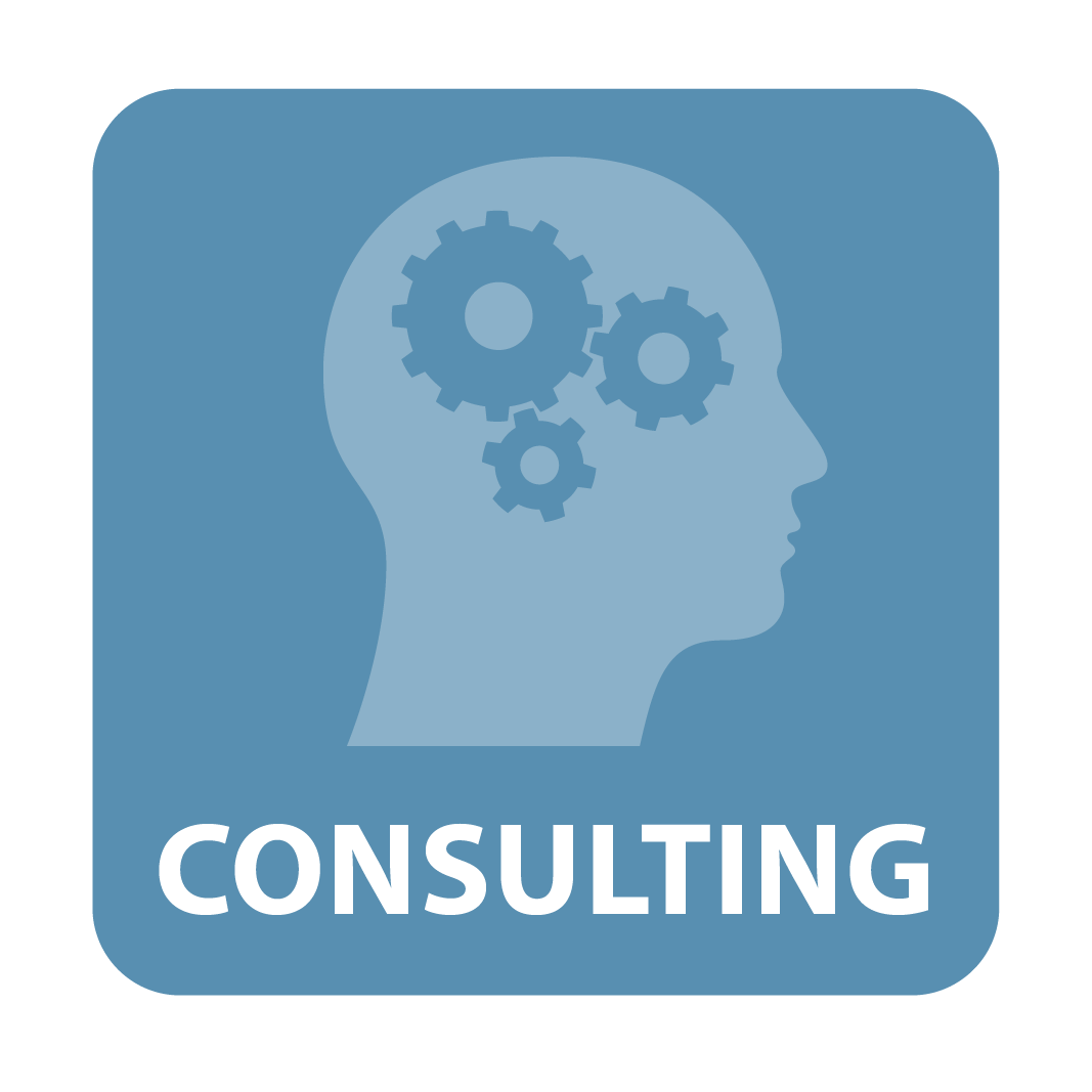 EXPAND Business Solutions Consulting Services